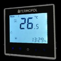 termoregulator.png
